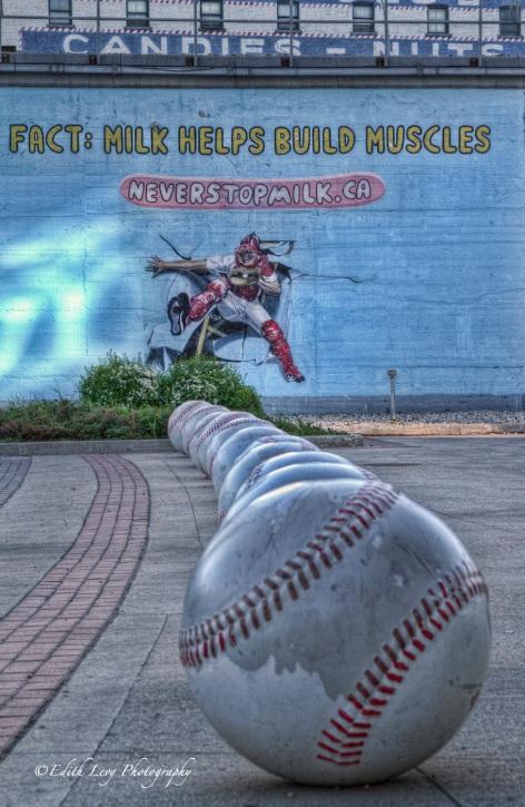 Shaw Park, Winnipeg Baseball