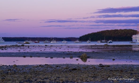 Bar Harbor, Maine, Sand Bar, low tide, sunset,