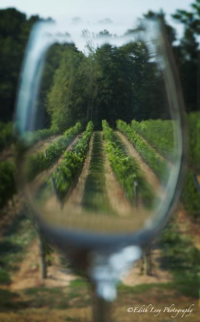 vineyards, wine country, Niagara on the Lake, Ontario, wineglass