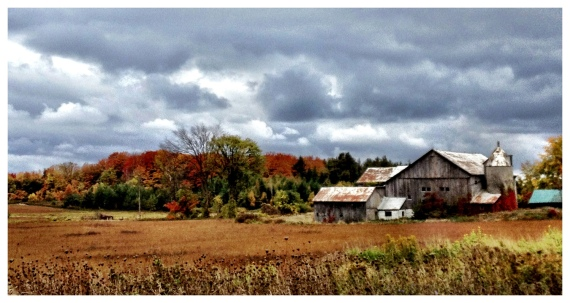 fall colours, Muskoka, Ontario,