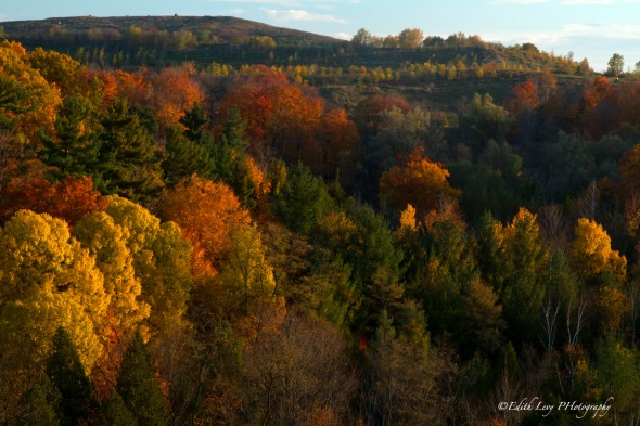 Rouge River, Ontario, fall, fall colours, landscape,