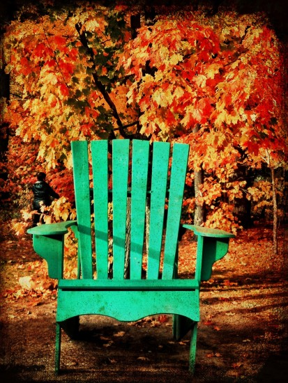 fall colours, Muskoka, Ontario, chair