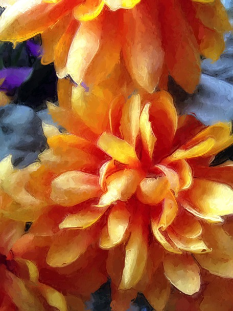floral, orange, 645Pro, Glaze