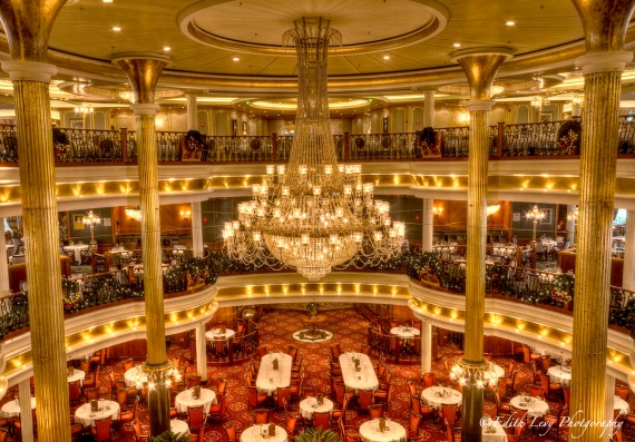 dining room, cruise, ship, navigator of the sea, interior