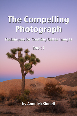The Compelling Photography, Techniques for creating better images, Anne McKinnell, ebook