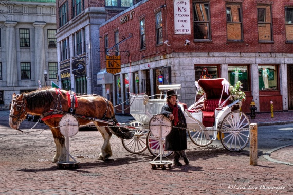 Boston, caleche, horse, Faneuil Hall, street photography, horse and buggy, Topaz Clarity