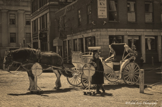 Boston, caleche, horse, Faneuil Hall, street photography, horse and buggy, Topaz Clarity, vintage, monochrome