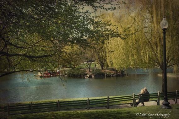 Boston, Boston Common, park, lake, bench, spring, travel photography