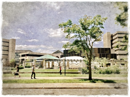 Western University, London, Ontario, campus, iphoneography, snapseed, PhotoToaster