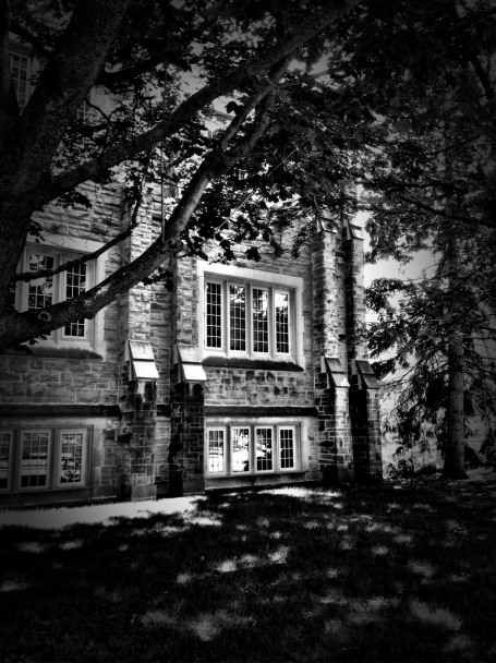 Western University, London, Ontario, campus, iphoneography, snapseed, Dramatic B&W