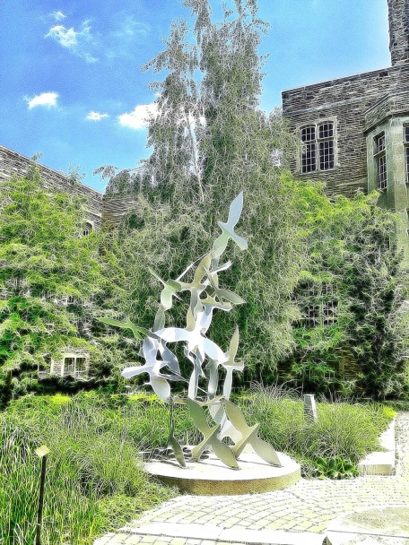 Western University, London, Ontario, campus, iphoneography, snapseed, Tangled FX