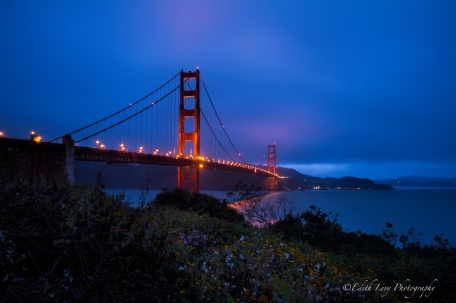 Golden Gate Bridge, San Francisco, California, Sunrise, Blue Hour, bridge, landscape, Edith Levy Photography