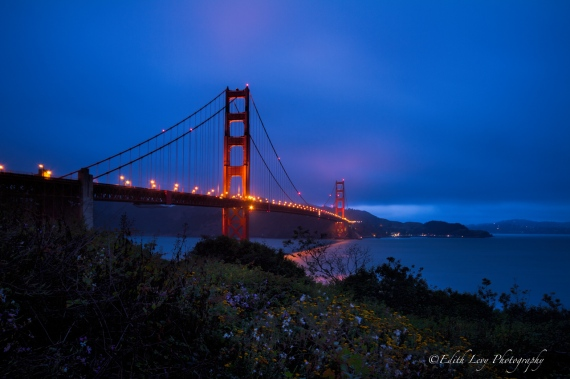 Golden Gate Bridge, San Francisco, California, Sunrise, Blue Hour, bridge, landscape, Edith Levy Photography