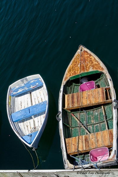 Monterey Bay, marina, rowboat, weathered, water, bobbing, travel photography