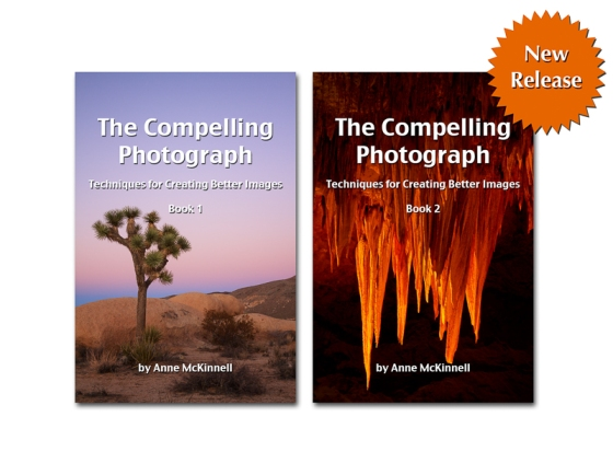 The compelling Photograph, techniques for creating better images, ane mckinnell, ebook, review, book 1, book 2,