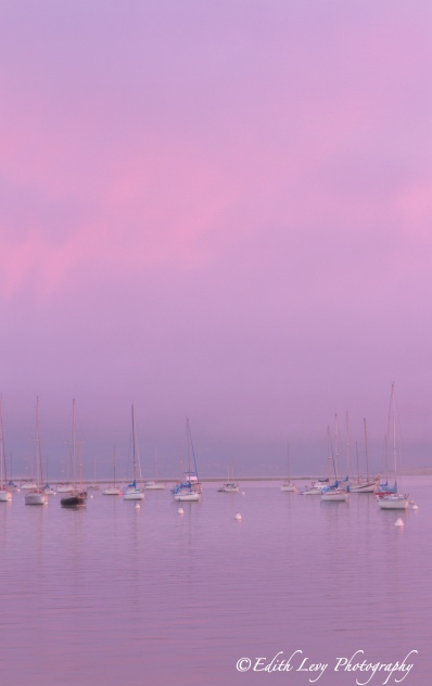Morro Bay, California, marina, sunset, boats, water, glow, purple, pacific coast