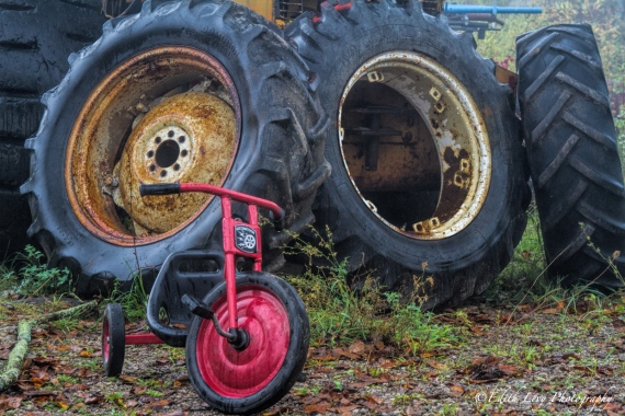 Rockwood Autoyard, Ontario, tires, truck, tricycle, opposites, juxtaposition, big wheels