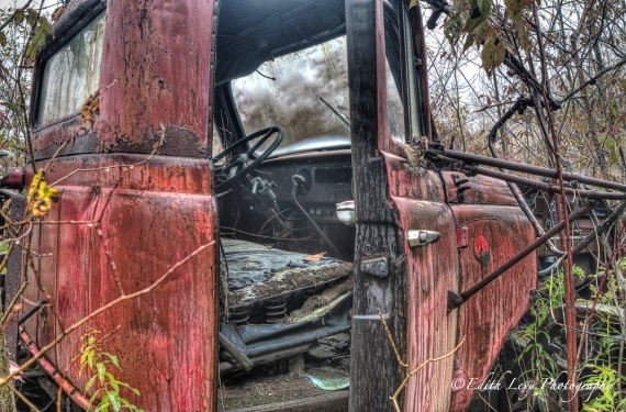 Rockwood Autoyard, Ontario, Rockwood, truck, red, grunge, HDR, forest, pickup