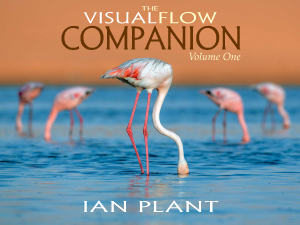 Visual Flow Companion, Ian Plant, composition, landscape, ebook,