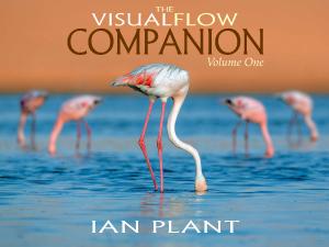 Visual Flow Companion, Ian Plant, composition, landscape, ebook,