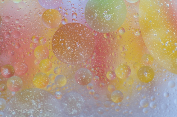 Tiny Bubbles, bubbles, abstract, macro, macro photography, oil and water, pastels,