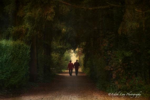 Toronto, Ward Island, path, mist, fog, walkers, romantic, city island,
