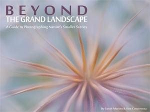 Beyond the Grand Landscape, Dreamscapes, Ian Plant, ebook