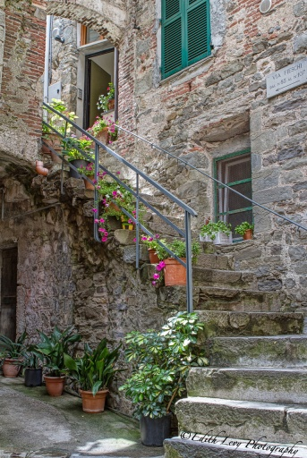 Corniglia, Cinque Terre, Italy, village, narrow street, staircase, flowers, travel photography