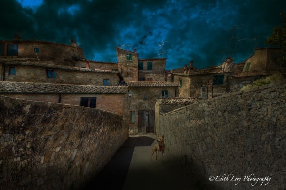 Italy, village, San Quirico D'Orcia, Tuscany, composite, fine art, dog, travel photography