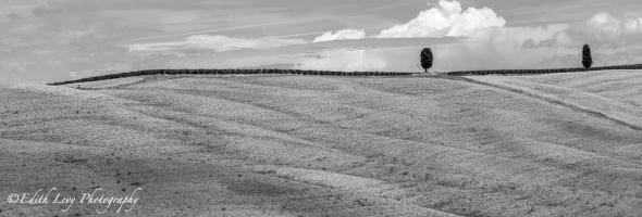 Tuscany, Italy, Blackand White, monochrome, landscape, travel photography, hillside, cypress trees, minimalist