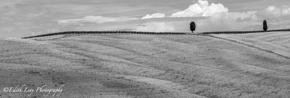 Tuscany, Italy, Blackand White, monochrome, landscape, travel photography, hillside, cypress trees, minimalist
