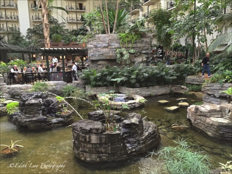 Nashville,Gaylord Opryland hotel, gardens, Imaging USA, Professional Photographers of America, PPA