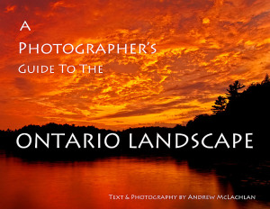 Andrew_McLachlan_Ontario_Landscape_Cover