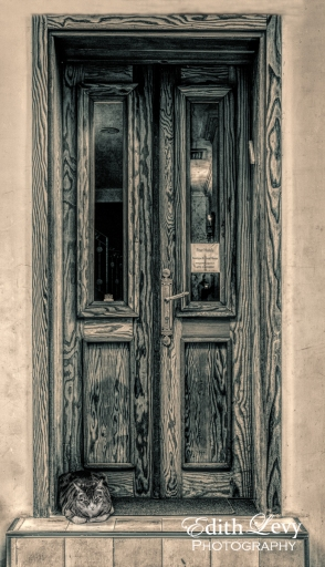 Israel, Tel Aviv, hotel, Peer Hotel, cat, door, wood door, monochrome, travel photography