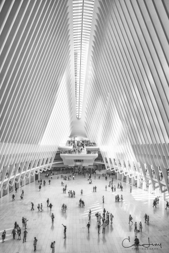 Westfield World Trade Centre, New York, NYC, Manhattan, mall, black and white