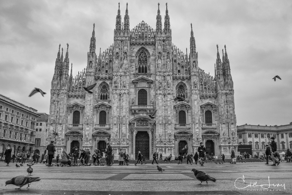 Milan, Italy, Duomo, cathedral, church, black and white, monochrome, travel, pigeons