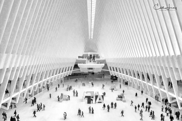 The Oculus, World Trade Center, New York, NYC, Lower Manhattan, Black and White, BNW