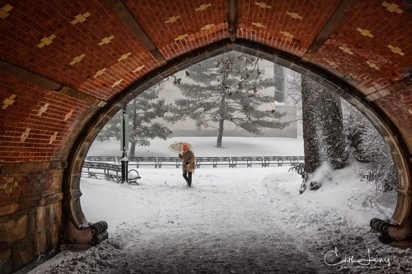 New York, NYC, Manhattan, Central Park, blizzard, snow, bridge, tunnel, storm, cyclone bomb