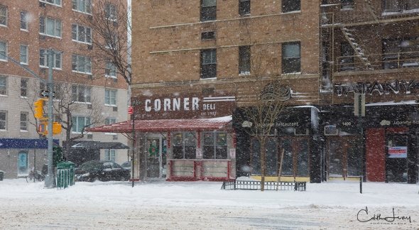 New York, NYC, Manhattan, blizzard, snow, storm, cyclone bomb, Upper East Side