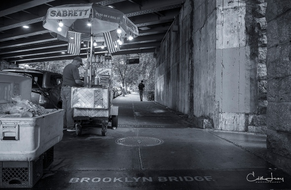 New York, Brooklyn, DUMBO, underpass, hotdog vendor, black and white, BNW, NYC