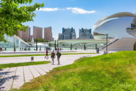 Spain, Valencia, City of Arts and Sciences, complex, architecture, modern city, travel